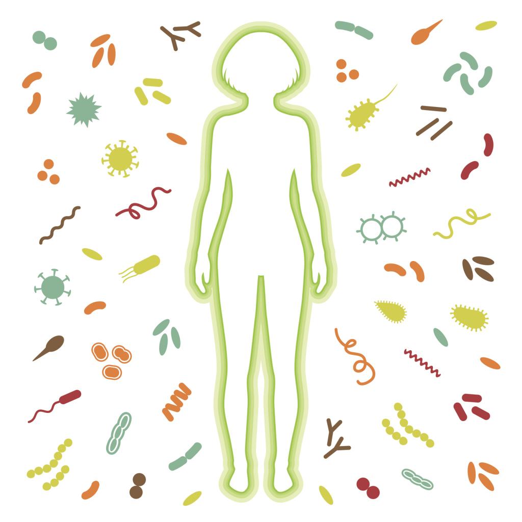 Immunsystem. Körper reflektiert Angriff von Bakterien und Viren