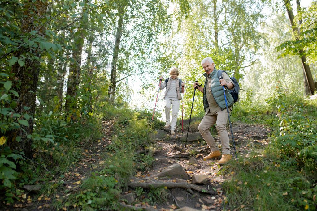 Älteres Paar wandert mit Trekkingstöcken bergab durch den Wald