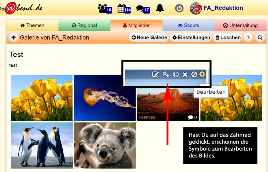 Screenshot Bild bearbeiten