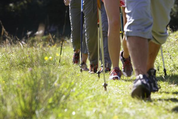 Beine von vier Wanderen mit Trekkingstöcken