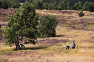 Spaziergänger in der Lüneburger Heide