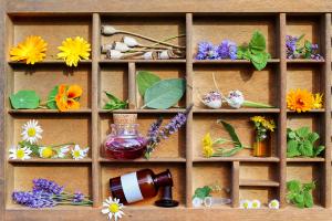 Setzkasten mit verschiedenen Pflanzen