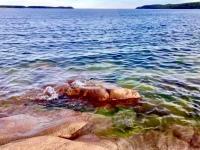 Abgeflachter Felsen am Bottnischen Meer